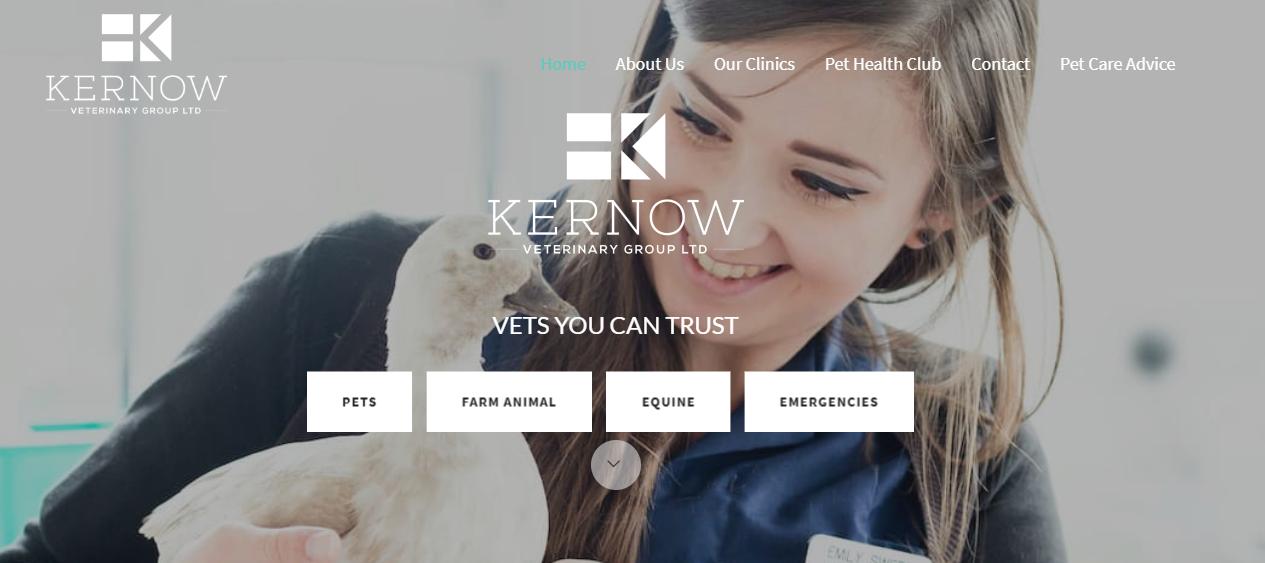 Kernow Vets Digital Marketing
